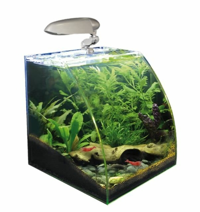Nano Aquarium Wave Box Vision 30 vitre courbée - 20L 30x30/30x15cm