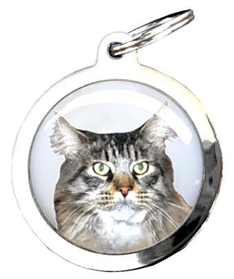 Médaille Figurine - Chat Maine Coon