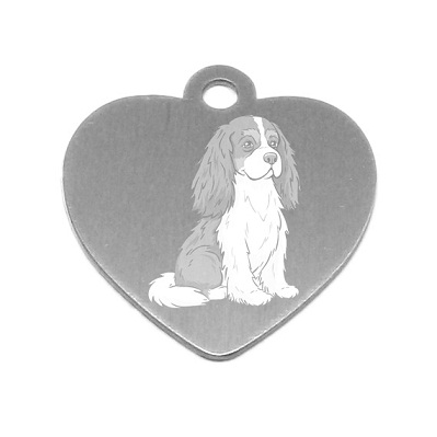 Medaille personnalisee chien race cavalier king charles spaniel